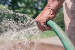 Man watering garden with a hose