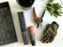 A Gardeners gloves and tools
